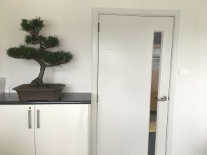 office bonsai. Here Are A Few Examples Of My Bonsai In An Office Space. L